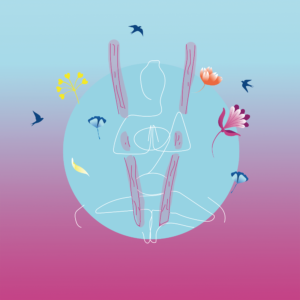 Aerial Yoga – basistraining (Fundamentals + Asana + Relax & Recharge)